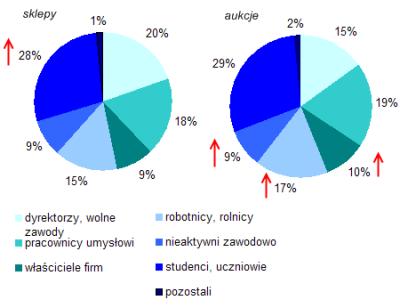Profil polskich e-klientów - podział według statusu zawodowego (źródło: NetTrack SMG/KRC, styczeń-listopad 2007).