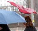 Pogoda w Niemczech. 20 stopni i szalej�ce wichury