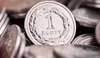 Ekonomi�ci: z�otemu ci��y sprawa ustawy frankowej i wieku emerytalnego