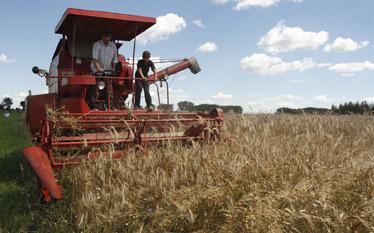Raport o polskiej wsi: Udzia� rolnictwa w tworzeniu PKB wynosi 3 proc.