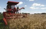 Większe zagrożenia wypadkami w gospodarstwach rolnych
