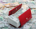 Wiadomo�ci: Dochodowy biznes w sieci. Poznaj 330 sposob�w na zarabianie