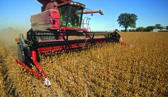 Ministerstwo rolnictwa kontroluje import ukrai�skiego zbo�a
