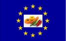 Alternatywny rynek zamiast wsparcia finansowego z UE