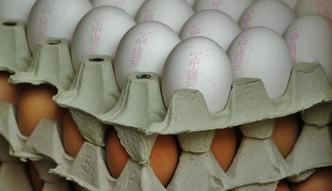 Szykuje się jajeczna fuzja. Ukraiński potentat może zamieszać na rynku