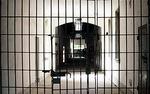 Rosyjski opozycjonista skazany na 4,5 roku �agru