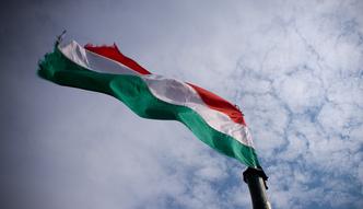 Polska firma otworzy�a fabryk� na W�grzech
