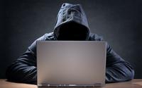 W sieci oszustwo popłaca. Ile zarabiają internetowi naciągacze?