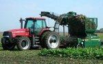 Grabowski: zabrać ulgi bogatym rolnikom