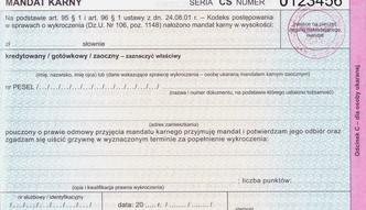 Pos�owie b�d� p�aci� mandaty. Dzi� Sejm g�osuje nad zmian� przepis�w