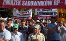 """Protest sadowników w Warszawie. """"To walka o przetrwanie"""""""