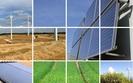 Biomasa - szansa dla polskiego rolnictwa