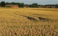 Problem z darowizną ziemi rolnej. Ustawa PiS znowu uderza w Polaków