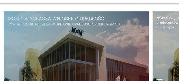 strona internetowa spółki MGM