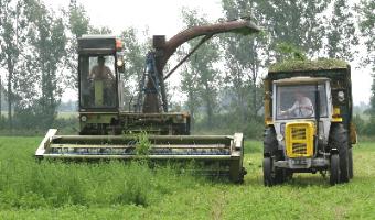 Polscy rolnicy trac� miliony z unijnych funduszy
