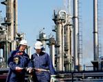 Decyzja OPEC pogr��y�a ceny ropy naftowej