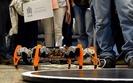 Festiwal Robotyki Robocomp. G��wna atrakcja - zawody robot�w