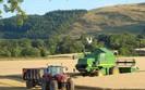 PSL: Podatek dochodowy dla rolnik�w jeszcze p�niej