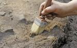 Wyznaczanie trendów w nauce: Szkielet odnaleziony w niedawno odkrytym starożytnym grobowcu w Grecji