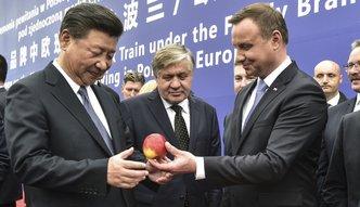 Polska nie wykorzystuje możliwości Jedwabnego Szlaku. Polityka ważniejsza od gospodarki?
