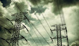 Energetyka w Polsce. Skandynawowie chcą inwestować w elektrownie na biomasę
