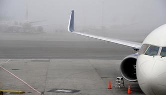 Rosja: Kolizja dw�ch airbus�w na p�ycie lotniska w Moskwie
