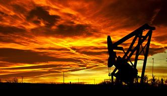 Ceny ropy. OPEC nie zmieni polityki dostaw