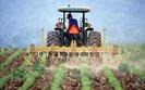 Pomoc dla rolnik�w. Od 2017 r. b�dzie mo�na dosta� 100 tys. z�