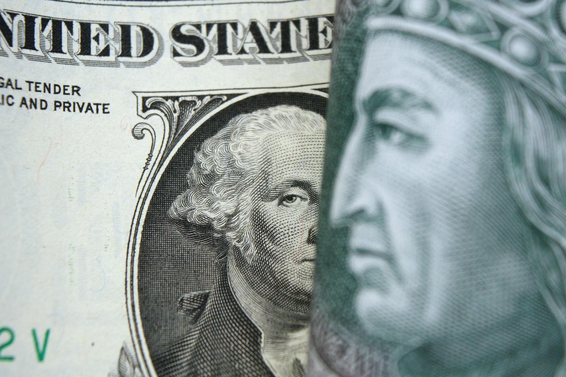 Kursy walut money forex