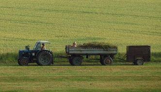 Senacka komisja rekomenduje przyj�cie noweli ws. obrotu ziemi� roln� bez poprawek