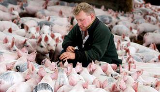 KRD: ro�nie zad�u�enie rolnictwa