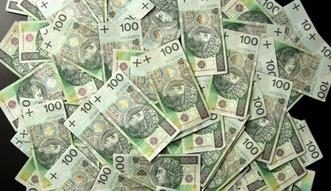 Podatek CIT. Polska traci 46 miliard�w rocznie. Przez korporacje