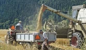 Krajowy Ośrodek Wsparcia Rolnictwa zastąpi dwie ważne agencje
