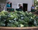Rolnictwo w Polsce. Unia zap�aci za jego promocj�