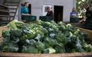 Unia Europejska przedstawi nowe propozycje wsparcia dla rolnik�w