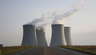 """Litewscy posłowie przeciw białoruskiej elektrowni atomowej. """"Zagraża bezpieczeństwu"""""""