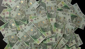 Najdziwniejsze polskie podatki. Oto jak politycy pr�buj� �ata� dziur� bud�etow�