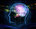 Wiadomości: Sztuczna inteligencja pomoże znaleźć oszustów