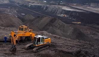 Import w�gla do Polski wzr�s� o blisko p� miliona ton