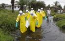 Wirus ebola. W czwartek spotkanie ministr�w z kraj�w Unii