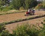 Ubezpieczenia dla rolników. Dostaną spore wsparcie państwa
