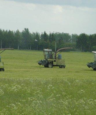 Rolnictwo na Bia�orusi. W tym roku s�absze plony
