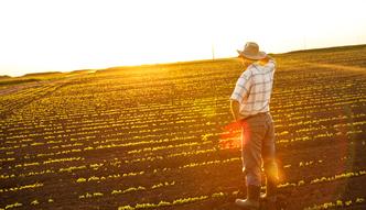 Straty w polskim rolnictwie wynoszą już 4,3 mln zł. Ta kwota może urosnąć
