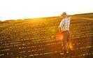 Obr�t ziemi� roln�. Jaki efekt nowych przepis�w?
