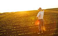 Pomoc dla młodych rolników. Aragonia oferuje 70 tys. euro