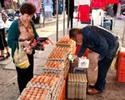 Wiadomo�ci: Jaja zaka�one salmonell� pochodz� z Wielkopolski