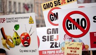 PiS złamał publiczne przyrzeczenie i nagle pokochał GMO