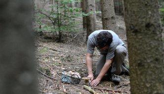 Wybierasz si� do lasu? Zobacz czego nie wolno ci tam robi�