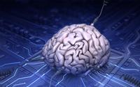 Amerykanie inwestuj� 28 milion�w dolar�w w badania nad sztuczn� inteligencj�