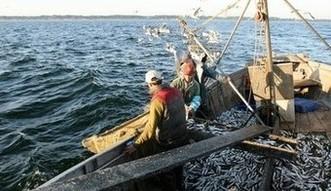 Fundusze unijne. 4 mln euro dla rybak�w